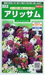 gardening-novice-5