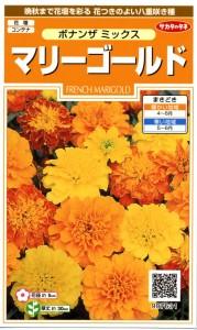 gardening-novice-6