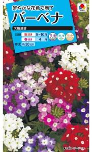 gardening-novice-7