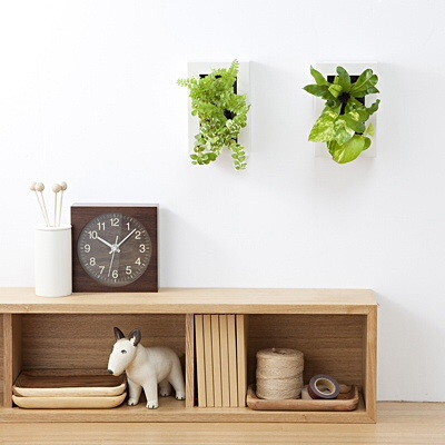 how-to-diy-wallgreen-3