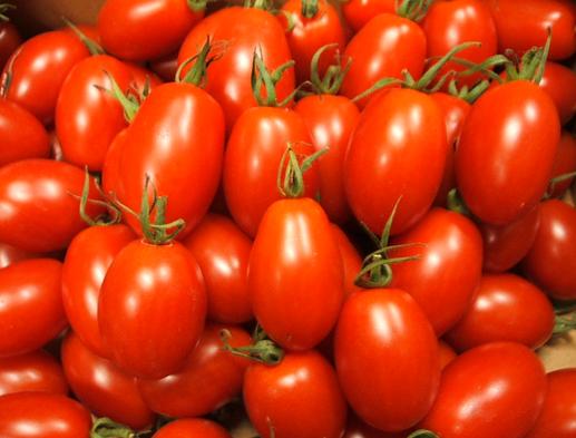 ミニトマト プランター