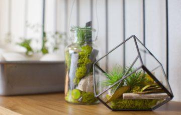 interior greening-min